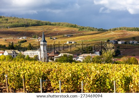 Chenas with vineyard, Beaujolais, Rhone-Alpes, France - stock photo
