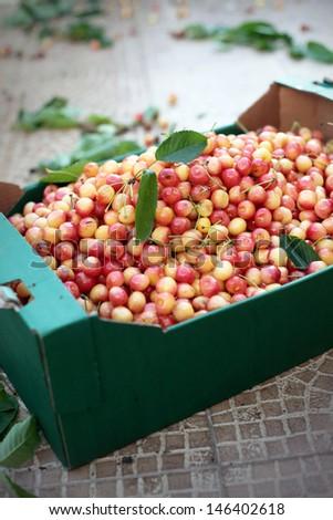 Cherries in box - stock photo
