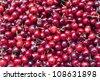 Cherries on market - stock photo
