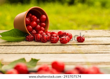 Cherries on wooden table with water drops macro background. DOF - stock photo