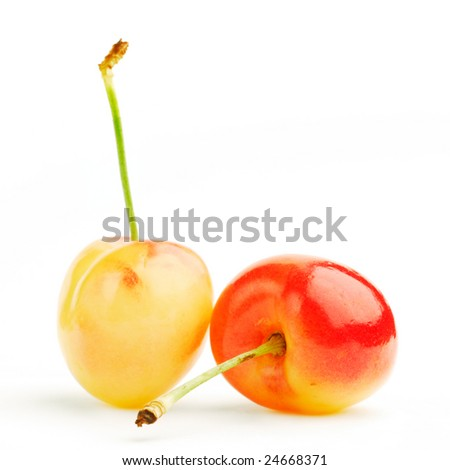 Cherries studio isolated on white background