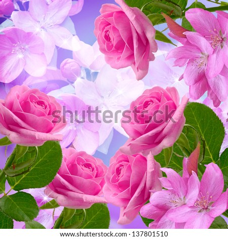 Cherry and roses blossom and shine stars - stock photo