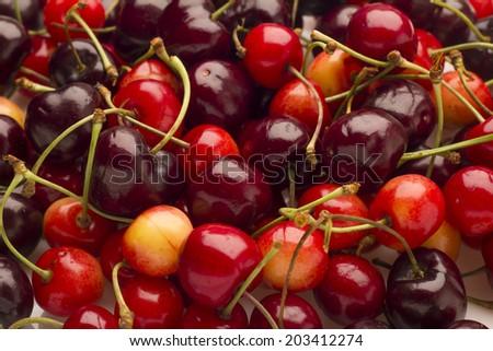 Cherry background - stock photo