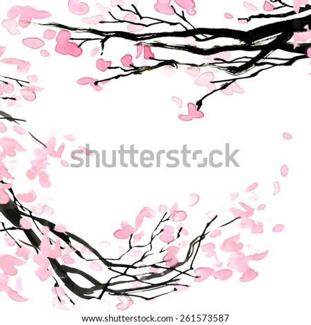 Cherry blossom branch. watercolor illustration