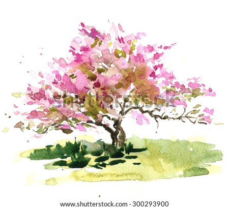 cherry blossom bush drawing by watercolor, aquarelle sketch of blooming apple tree, painting garden, hand drawn background, artistic illustration - stock photo