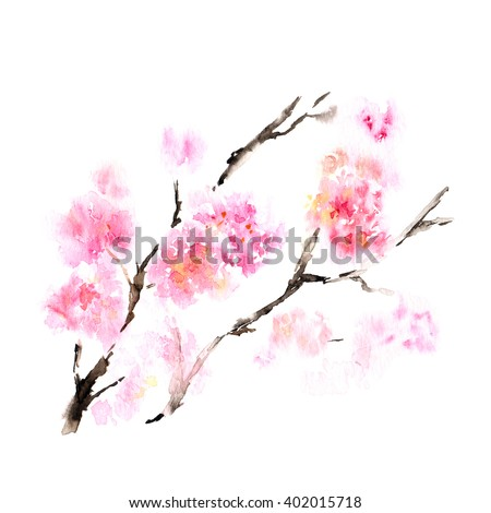 Cherry blossom. Sakura flowers. Floral background. Branch with pink flowers. Birthday card. - stock photo