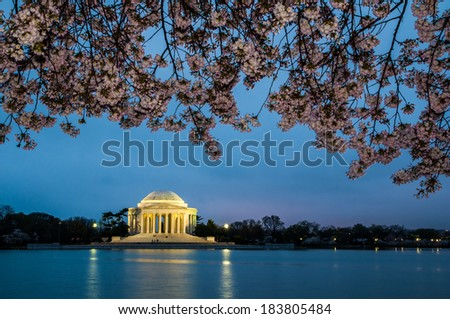 Cherry blossoms at the Jefferson Memorial before sunrise - stock photo