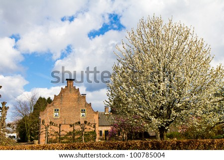Cherry blossoms in front of an 18th century house in Veldhoven, the Netherlands - stock photo