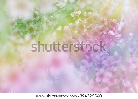 Cherry blossoms in soft multicolor made blur style for background