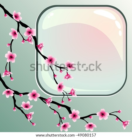 Cherry blossoms with square button (JPG); vector version also available