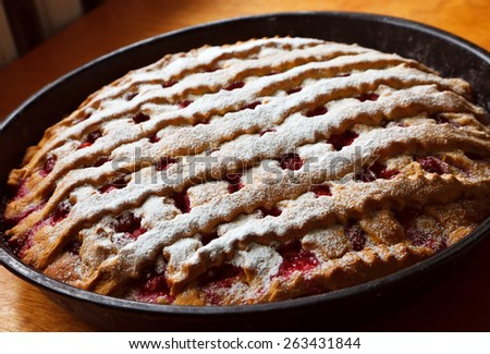 cherry cake dusted with powdered sugar - stock photo