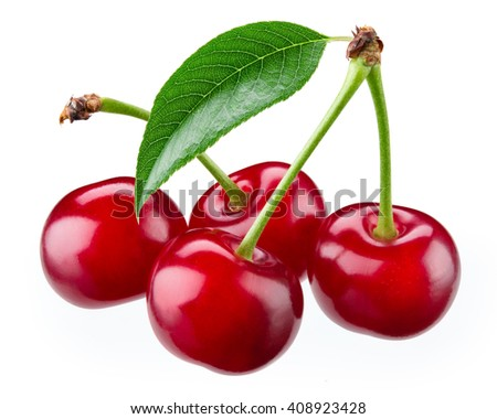 Cherry. Fresh ripe berries isolated on white. With clipping path. - stock photo