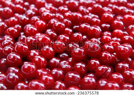 Cherry fruits background - stock photo