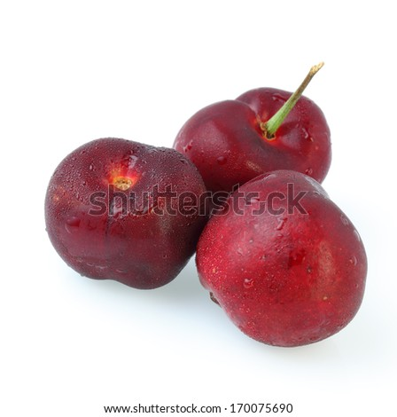 cherry on white background