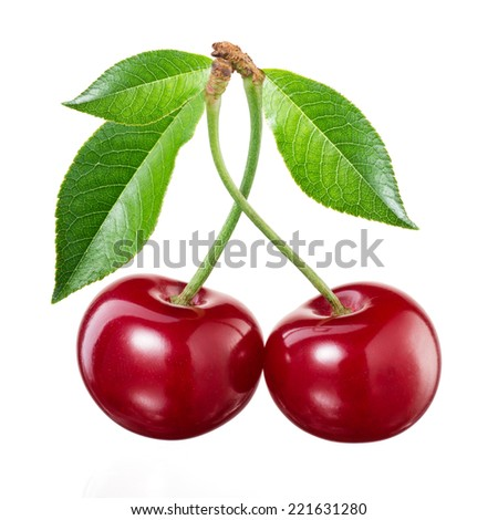 Cherry on white background - stock photo
