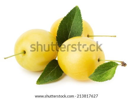 cherry plums isolated on the white background