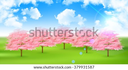 Cherry spring flower background
