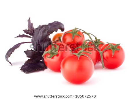 Cherry tomato and basil leaves still life isolated on white background cutout