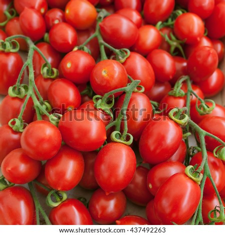 Cherry tomatoes. Cherry tomatoes on vine on a farm market