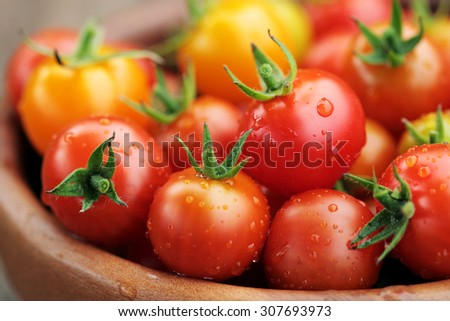 Cherry Tomatoes close up with water drops