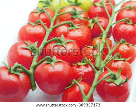 cherry tomatoes on a branch with selective focus