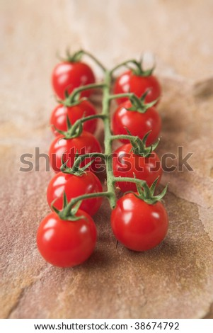 Cherry tomatoes on the vine - shallow dof - stock photo