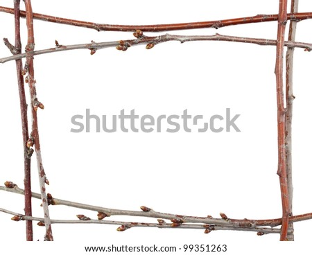 cherry tree branch frame