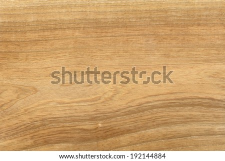 Cherry tree. High resolution natural wood texture, no scratches, - stock photo