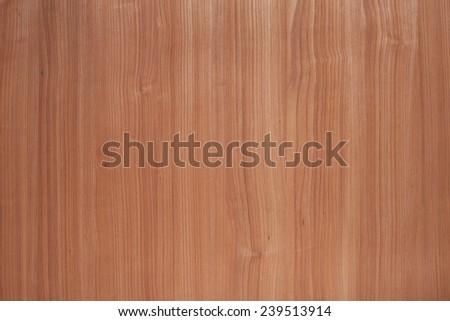 cherry tree texture for design background - stock photo