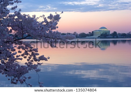 Cherry trees in blossom around Tidal Basin, Washington DC - stock photo