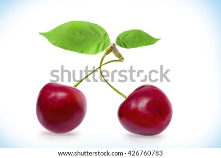 Cherry with leaves on a white background with clipping path. Ripe cherry isolated. Sherry berry fruit isolated on white background. Sweet cherry. Red cherry. Cherry on white. Cherry isolated.
