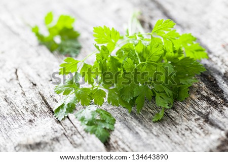 chervil on wooden background - stock photo