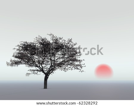 Chery tree and sunset - stock photo
