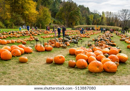 Cheshire, MA, USA - October 16, 2016: Adults and Children at the Whitney Farm Market and Pumpkin Feast. Cheshire, a town in the Berkshires, is located within the valley of the Hoosic River.