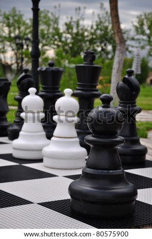 chess game on garden