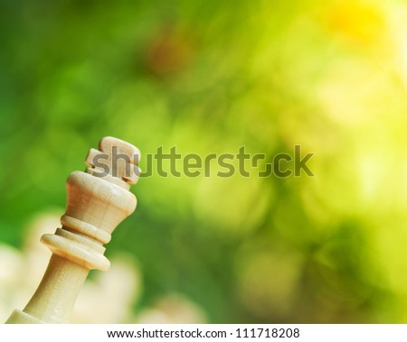 chess king on a table in the park - stock photo