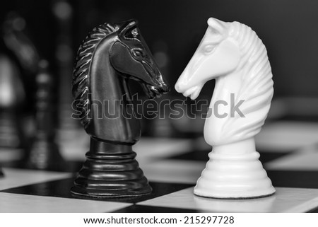 Chess knights head to head.  Black and white image. - stock photo