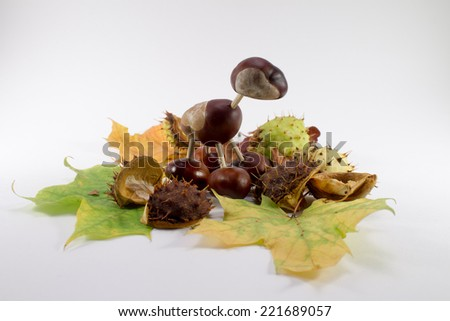 Chestnut figurine and fall leaves