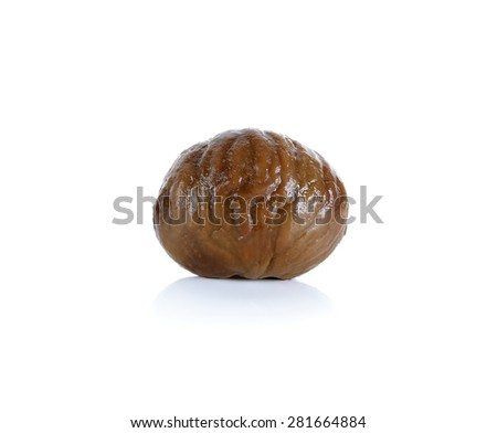 Chestnut isolated on the white background.