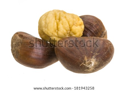 Chestnut isolated on white - stock photo