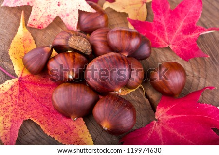 Chestnuts and autumn leaves scattered on the stump - stock photo