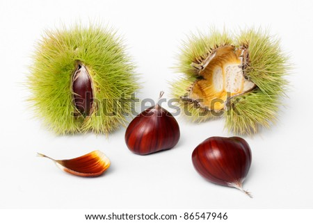 chestnuts fresh fruits and seeds on white background - stock photo