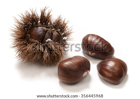 chestnuts in the husk and isolated on white  - stock photo