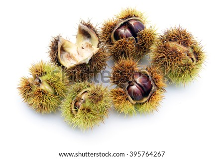 Chestnuts - isolated on white