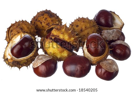 chestnuts isolated on white close up shoot