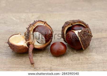 chestnuts lying on wood - stock photo