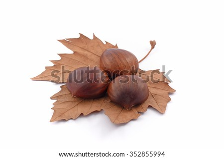 chestnuts on the leaf in the foreground on white background
