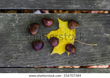 Chestnuts outside on wooden table with yellow leaf - stock photo