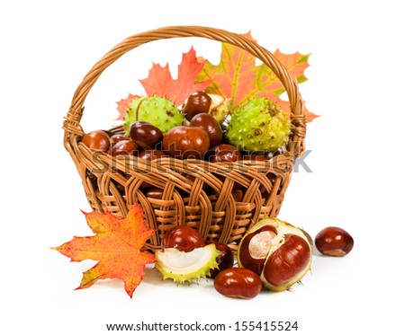 chestnuts with autumn leaves in a basket isolated on white - stock photo