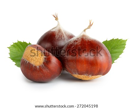 Chestnuts with chestnut leafs isolated on white - stock photo